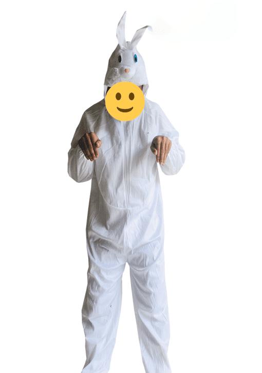 cho thuê đồ thỏ ngọc